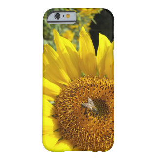 Honey Bee on Yellow Sunflower Barely There iPhone 6 Case