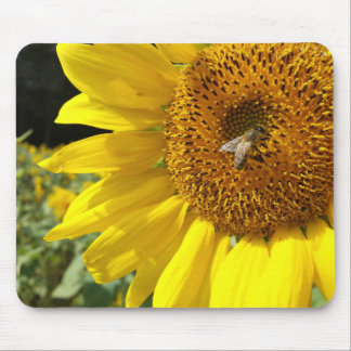 Honey Bee on Yellow Sunflower Mouse Pads