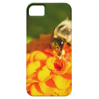 Honey Bee  Orange Yellow Flower With Pollen Sacs iPhone SE/5/5s Case