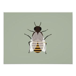 Honey bee photo print
