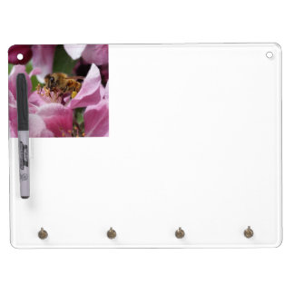Honey Bee Pollinating Pink Crabapple Tree Blossom Dry Erase Board With Keychain Holder