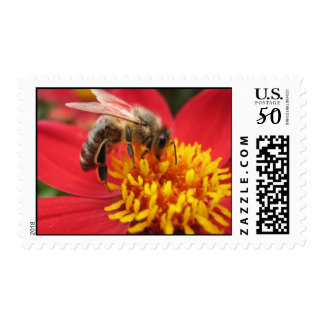 Honey Bee Postage