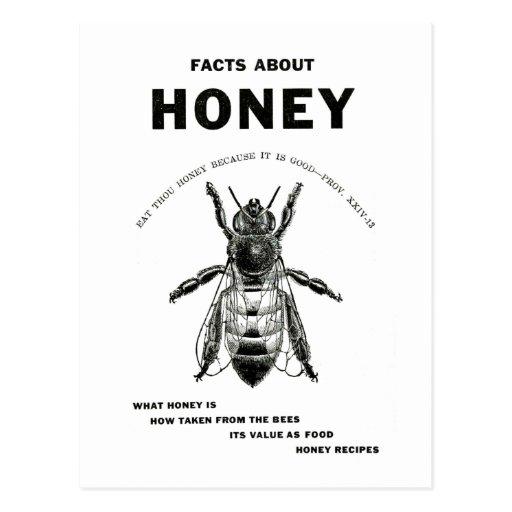 Honey Bee Vintage Advertising Post Cards