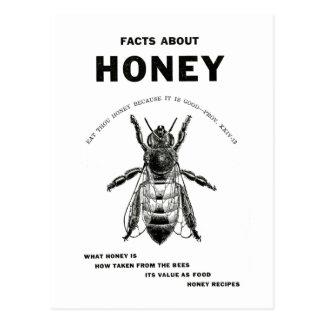 Honey Bee Vintage Advertising Postcard