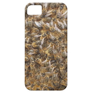 honey bees and more honey bees iPhone SE/5/5s case
