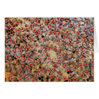 Honey Bees Christmas greeting card