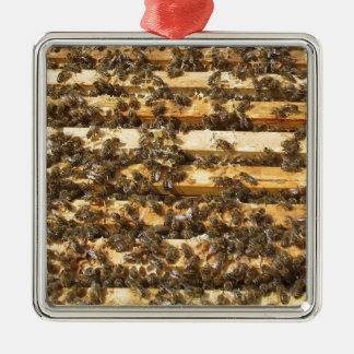 Honey Bees everywhere Christmas Ornament