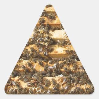Honey Bees everywhere Triangle Sticker