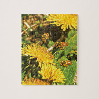 Honey Bees Flying Around Dandelions Jigsaw Puzzle