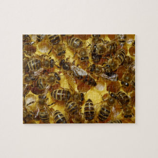 Honey Bees in Hive with Queen in Middle Jigsaw Puzzle