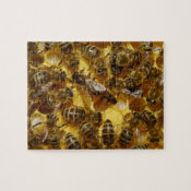 Honey Bees in Hive with Queen in Middle Puzzles