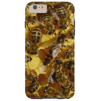 Honey Bees in Hive with Queen in Middle Tough iPhone 6 Plus Case