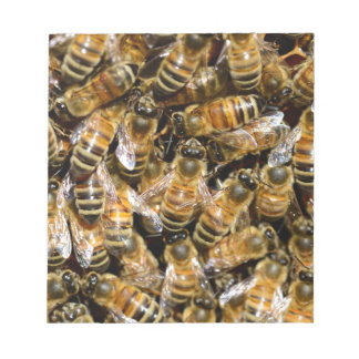 Honey bees notepad