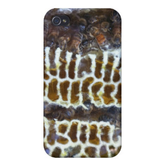 Honey Bees On Comb Cover For iPhone 4