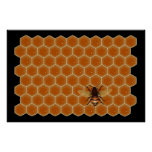 Honey Bees Posters