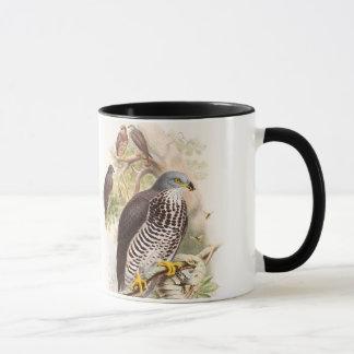 Honey-Buzzard John Gould Birds of Great Britain Mug