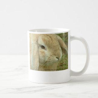 Honey Coffee Mugs