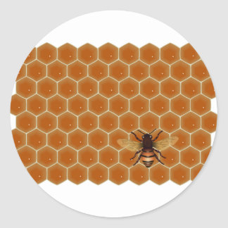 Honey Comb and Bee Classic Round Sticker