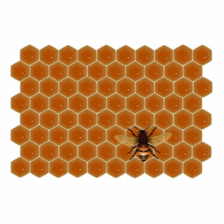 Honey Comb and Bee Photo Cut Out