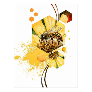 Honey comb bee yellow  flower postcard