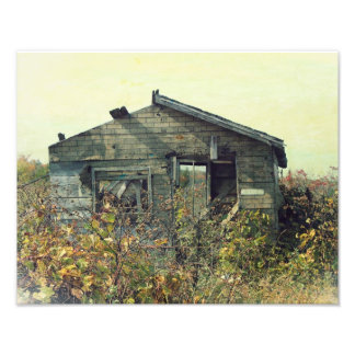 Honey House Distressed Photo Photo Art