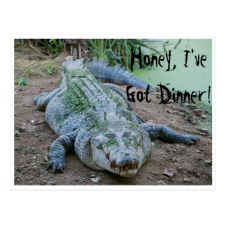 Honey, I've Got Dinner Hungry Crocodile Postcard