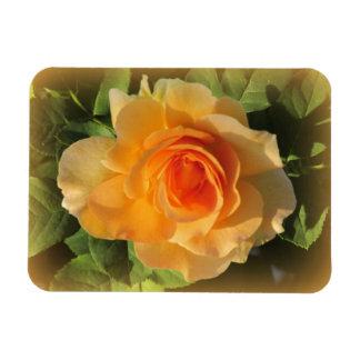 Honey Perfume Rose Flexible Magnet