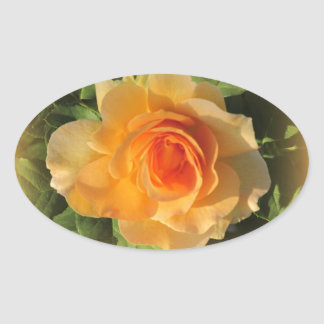 Honey Perfume Rose Stickers
