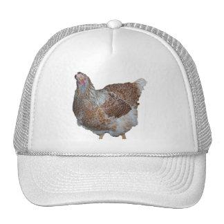 Honey the Blue Laced Wyandotte Hen Trucker Hat