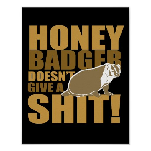 Honeybadger don't care posters