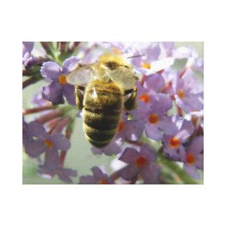 Honeybee and Buddleia Flowers Canvas Print