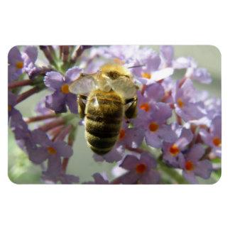 Honeybee and Buddleia Flowers Flexi Magnet