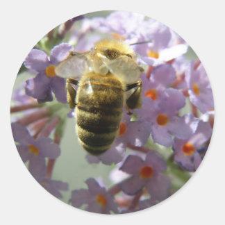 Honeybee and Buddleia Flowers Stickers