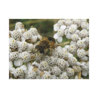 Honeybee and Flowers Canvas Print
