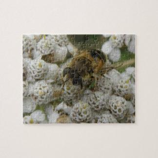Honeybee and Flowers Puzzle