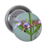 Honeybee Collection Pinback Buttons