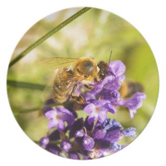 Honeybee Dinner Plate
