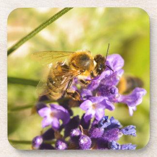 Honeybee Drink Coaster