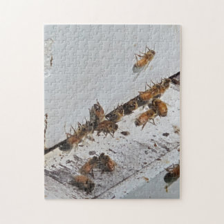 Honeybee Hive Entrance Jigsaw Puzzle
