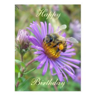 Honeybee on Asters Birthday Coordinating Items Postcard