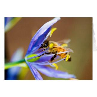 Honeybee on Blue Flower Card