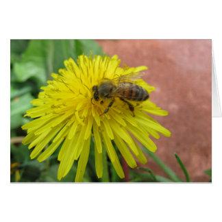 Honeybee on Dandelion Card