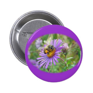 Honeybee on Fall Asters Wildflower Series Pinback Button