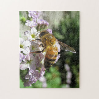 Honeybee on Heliotrope Puzzle