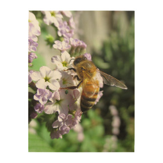 Honeybee on Heliotrope Wood Wall Art