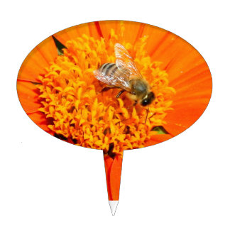 honeybee on orange cakepick