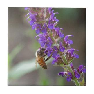 Honeybee on Salvia Ceramic Tile