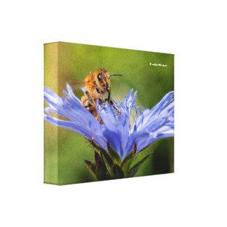 Honeybee on the Flowering Radicchio Canvas Print