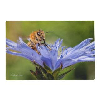 Honeybee on the Flowering Radicchio Placemat