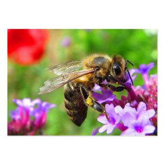 Honeybee on Verbena ATC Large Business Card